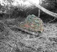 Oak Wood defence site