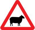 UK Traffic Sign Diagram Number 549 - Sheep